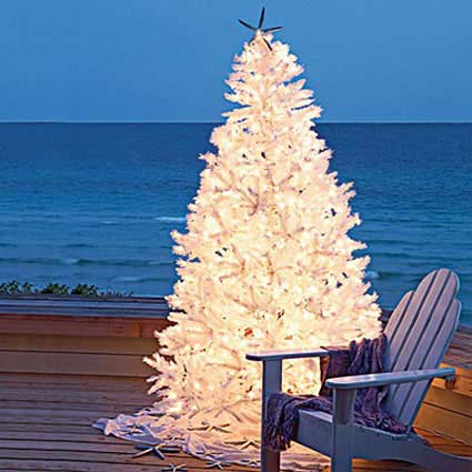 A simple beach themed christmas amazing design for less for Outside christmas scenes